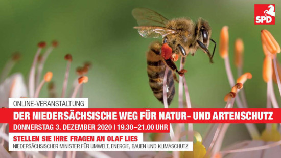 Bild mit Biene und Einladungstext